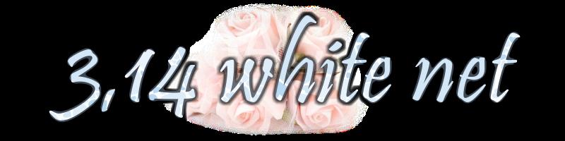 314ホワイトネット